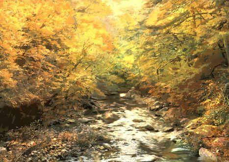 Обои Небольшая речка в осеннем лесу