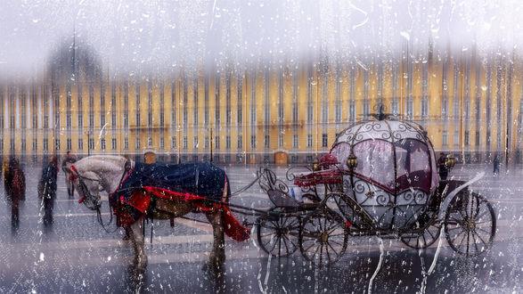Обои Карета с лошадью под дождем, фотограф David VIBESCRIB