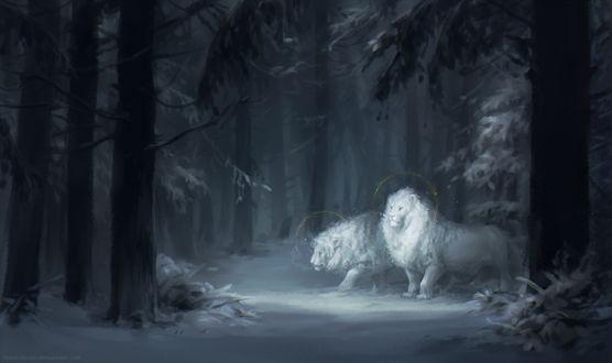 Обои Белоснежные два льва на фоне снега в лесу, by Kuroi-kisin