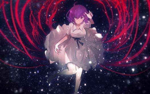 Обои Сакура Мато / Matou Sakura из серии аниме и визуальных новелл Fate / Stay night / Судьба: Ночь схватки / Ночь прибытия, в кровавой паутине