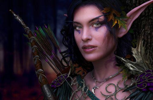 Обои Эльфийка с луком и стрелами на фоне леса смотрит в камеру