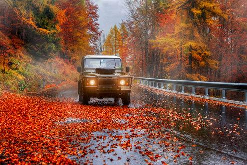 Обои Авто на осенней дождливой дороге, фотограф Гордеев Эдуард