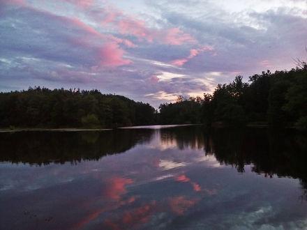 Обои Озеро у леса