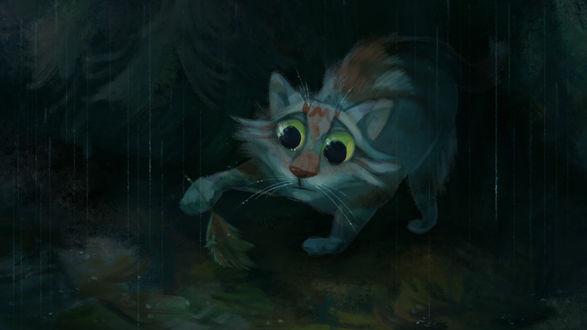 Обои Кошка держит в лапе листочек, стоя под дождем, by Speedienth