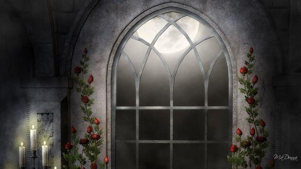 Обои Готическая арка с цветами и свечами, луна за окном, by MaDonna
