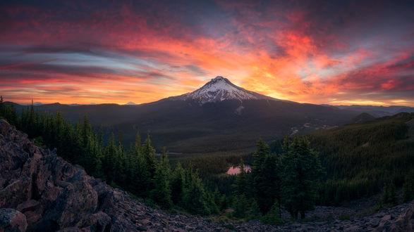 Обои Гора под розовым небом на рассвете, фотограф Kevin Shearer