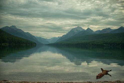 Обои Bowman Lake / Озеро Боумен в пасмурное утро. Glacier National Park, Montana / Национальный парк Ледник, Монтана, фотограф SandyK29