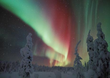 Обои Северное полярное сияние на небе