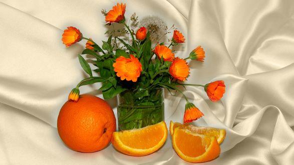 Обои Календула в стакане с водой и апельсин на белой ткани, фотограф Елена Аникина