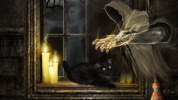 Обои Приведение, черный кот, свечи и метла возле окна ночью, by MaDonna