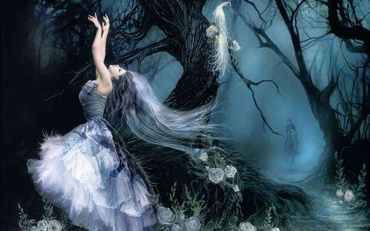 Обои Девушка танцует ночью в лесу среди цветов, мужчина на лошади едет к ней