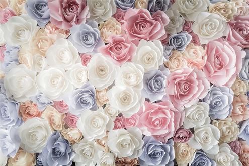 Обои Море роз, белых, голубых, розовых