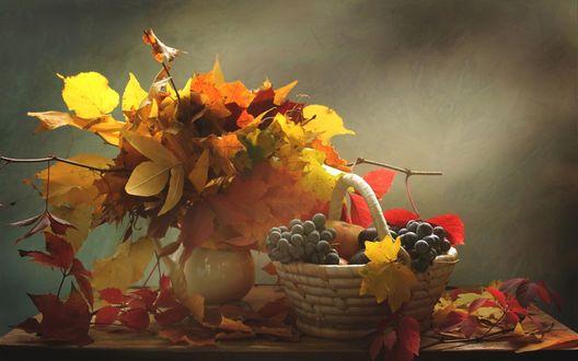 Обои Букет из осенних листьев в вазе и корзинка с яблоками и виноградом стоят на столе