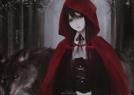 Обои Девушка в красном плаще и волк, by Aoi Ogata