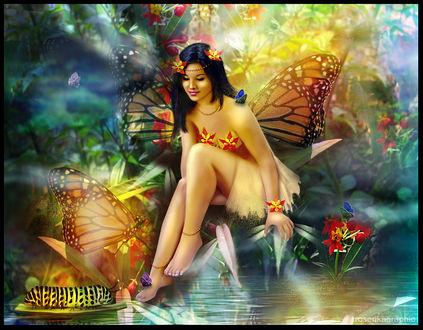 Обои Девушка-фея сидит у воды на фоне обитателей и природы сказочного леса, by Rosericagraphic