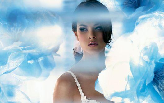 Обои Красивая девушка стоит на фоне бело-голубых цветов