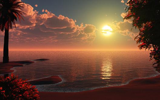 Обои Закат на побережье, by relhom