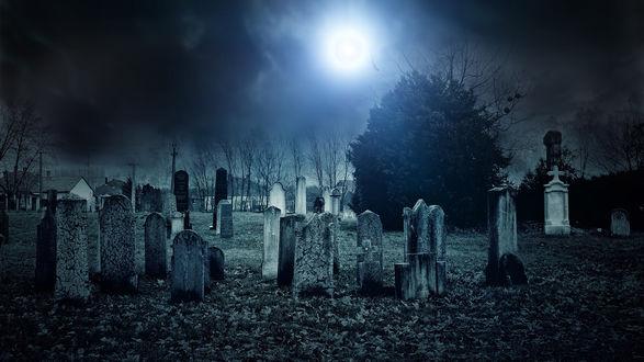 Обои Кладбище ночью под луной