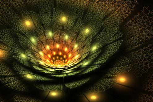 Обои Абстракция в форме цветка на темном фоне