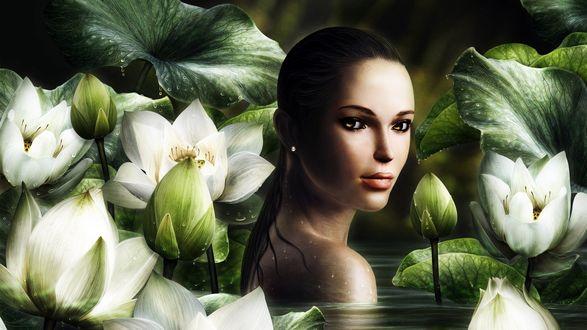 Обои Lara Croft / Лара Крофт cреди лотосов, by oxxxxxashxxxxxo
