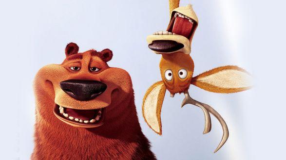 Обои Медведь и лень из мультфильма Сезон охоты