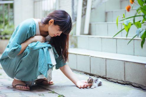 Обои Девушка с котенком на улице города