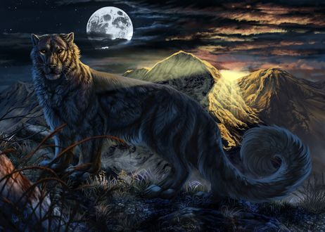 Обои Красивый леопард с пушистым хвостом стоит на фоне гор и ночного неба с огромным диском луны, автор WolfRoad