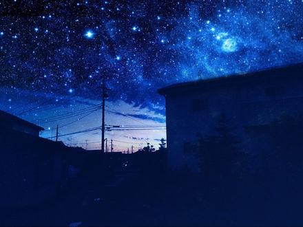 Обои Звездное ночное небо над крышами домов