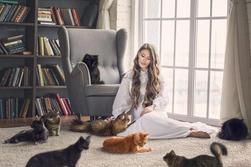 Обои Девушка сидит на полу в окружении котов, Фотограф Марина Семехина