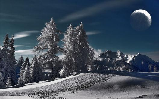 Обои Зимняя дорога, проходящая вдоль елей на фоне лунного неба и гор