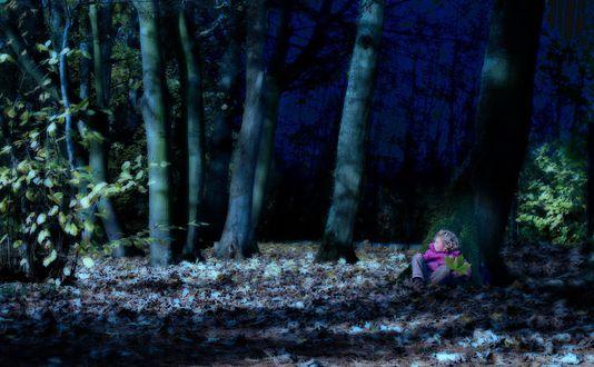 Обои Ребенок с кленовым листом сидит под деревом в осеннем лесу
