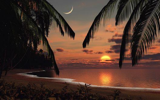 Обои Побережье экзотической природы на фоне заката солнца и появления луны