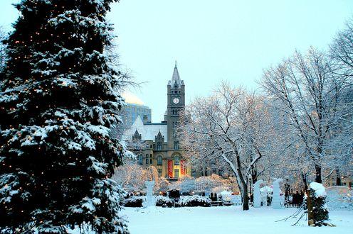 Обои Церковь с подсветкой среди деревьев и новогодней елки в снегу