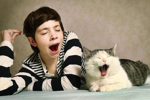 Обои Зевающий мальчик и кошка лежат рядом