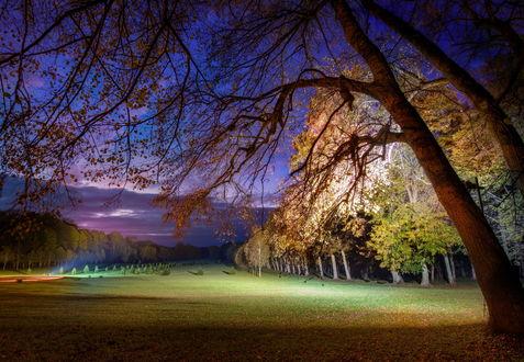 Обои Парк осенней ночью