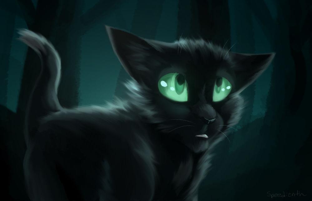 Обои для рабочего стола Ravenpaw / Горелый из серии романов Коты-Воители / Cats-Warriors, by Speedienth
