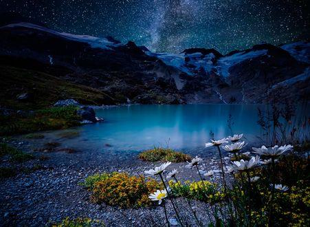 Обои Горное озеро, на берегу которого растут ромашки, на фоне ночного неба и млечного пути, фотограф cmoon view