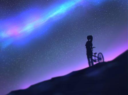 Обои Девочка с велосипедом смотрит на ночное небо