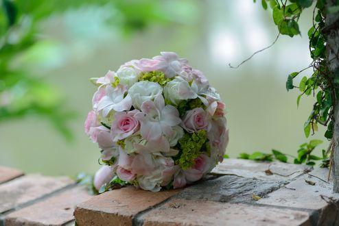 Обои Букет невесты из бело-розовых роз и орхидей лежит на кирпичной ограде на размытом фоне