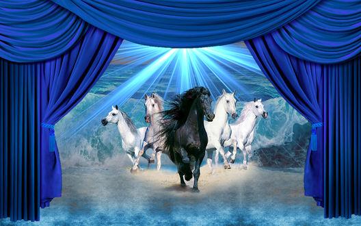 Обои Несущиеся лошади за занавесом на фоне толщи воды и голубого сияния