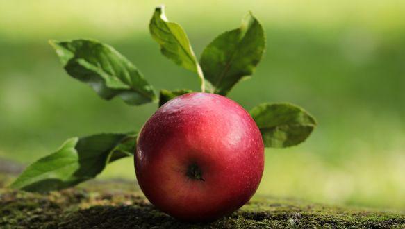 Обои Красное яблоко с листочками крупным планом
