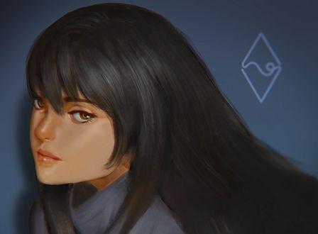 Обои Девушка с длинными волосами, by mangamie