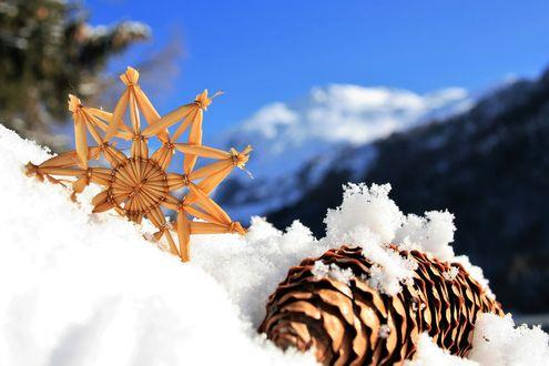Обои Шишка и сделанная снежинка на снегу