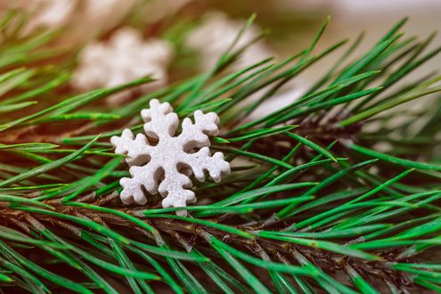 Обои Искусственная снежинка лежит на ветке ели