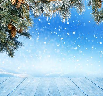 Обои Ветки с шишками и падающий снег
