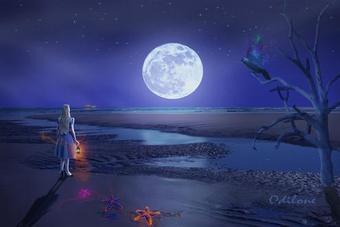 Обои Алиса с фонарем в руке стоит и смотрит на полную луну, by Odilone
