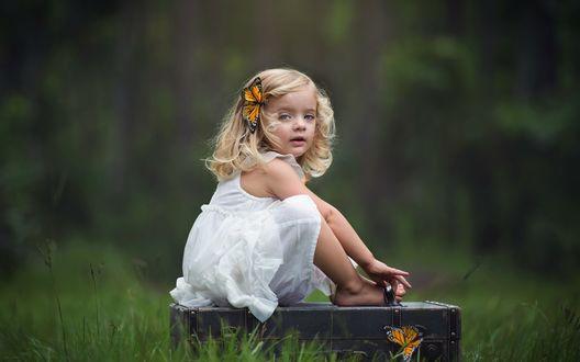 Обои Девочка в белом платье и с заколкой-бабочкой на волосах сидит на чемодане, фотограф Kim Pennington