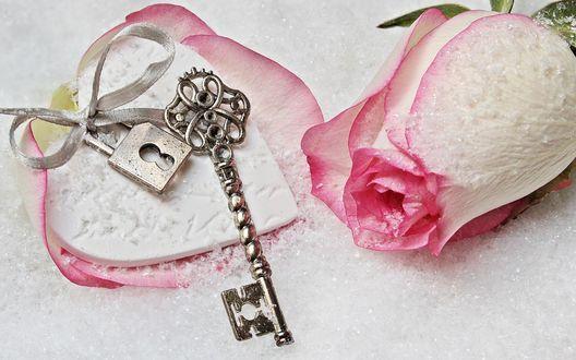 Обои Ключ с замочком завязанный ленточкой лежит на сердечке возле розы в снегу