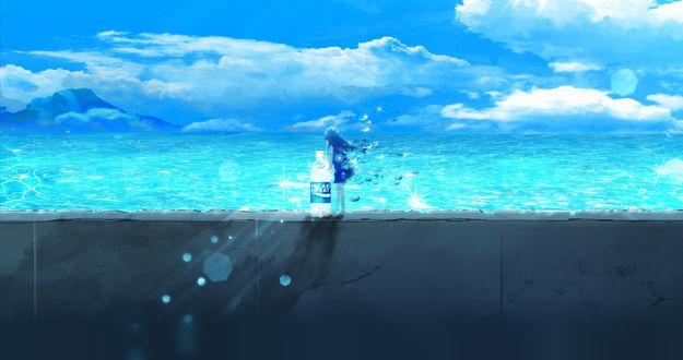 Обои Девочка стоит с бутылкой воды на каменном заборе у моря, by Y_Y