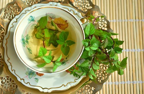 Обои Чай с мятой в чашке на блюдце и веточки рядом